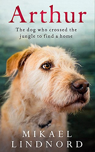 9781473625235: Arthur : The dog who crossed the jungle to find a home