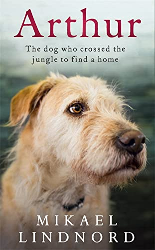 9781473625242: Arthur: The dog who crossed the jungle to find a home