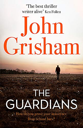 9781473684478: The Guardians: The Sunday Times Bestseller