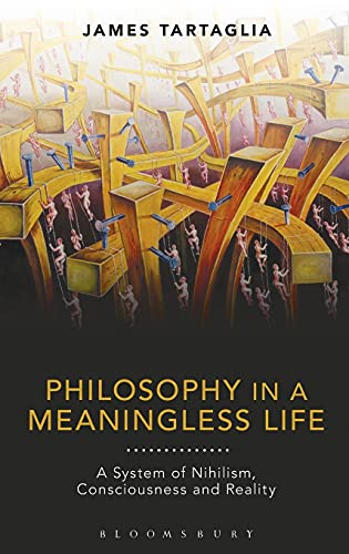 9781474247702: Philosophy in a Meaningless Life: A System of Nihilism, Consciousness and Reality