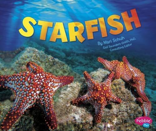 9781474704809: Starfish (Pebble Plus: Sea Life)