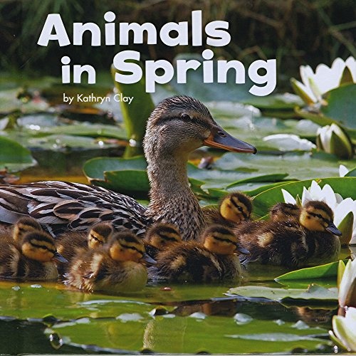 9781474712354: Animals in Spring (Little Pebble: Celebrate Spring)