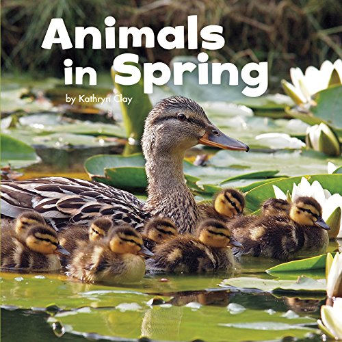 9781474712392: Animals in Spring (Little Pebble: Celebrate Spring)