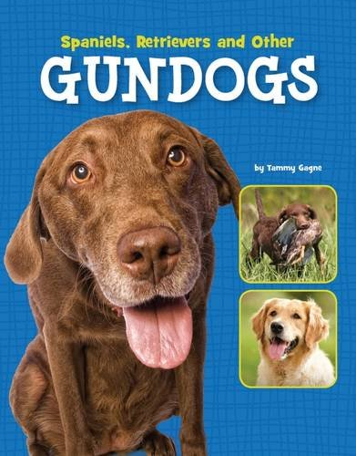 Spaniels, Retrievers and Other Gundogs (Edge Books: Dog Files) (Hardcover)