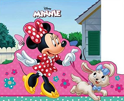 9781474807241: Disney Minnie Mouse My Storybook Library