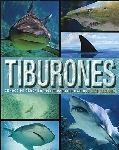 9781474816816: Tiburones. Conoce De Cerca Los Depredadores Marinos Mas Temidos