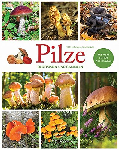 Pilze - Bestimmen und Sammeln (Hardback): Till R. Lohmeyer,