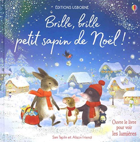 9781474956482: Brille, brille petit sapin de Noël !