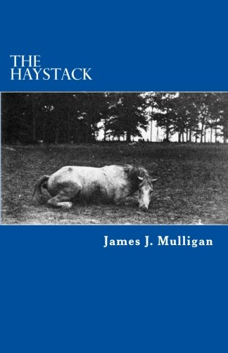 9781475101188: The Haystack: A Novel