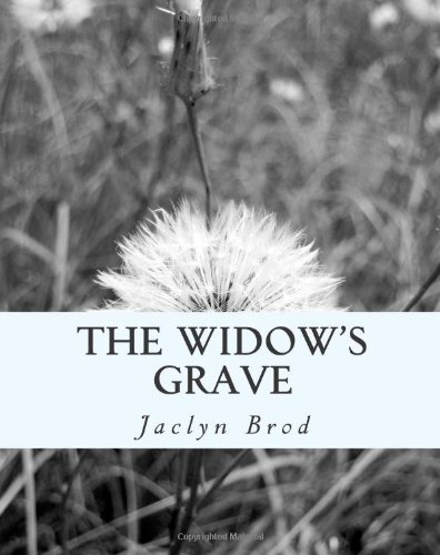 9781475183757: The Widow's Grave
