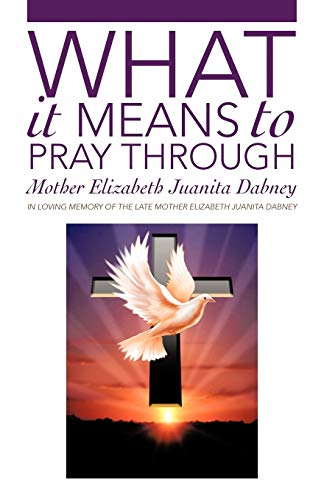 9781475922486: What It Means To Pray Through: A True Mystical Journey Of Spiritual Awakening To Find Divinity In The Heart Of Self