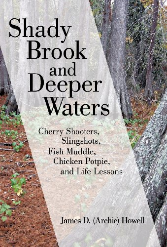 9781475983401: Shady Brook and Deeper Waters: Cherry Shooters, Slingshots, Fish Muddle, Chicken Potpie, and Life Lessons