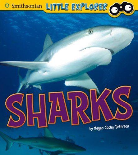 9781476535463: Sharks (Little Scientist)