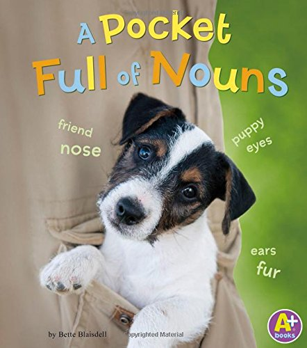 9781476550985: A Pocket Full of Nouns (Words I Know)