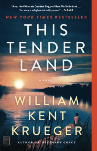 9781476749303: This Tender Land: A Novel