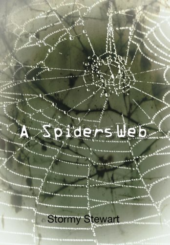 A Spiders Web: Stormy Stewart
