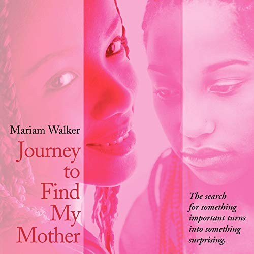 Journey to Find My Mother: The Search for Something Important Turns Into Something Surprising.: ...