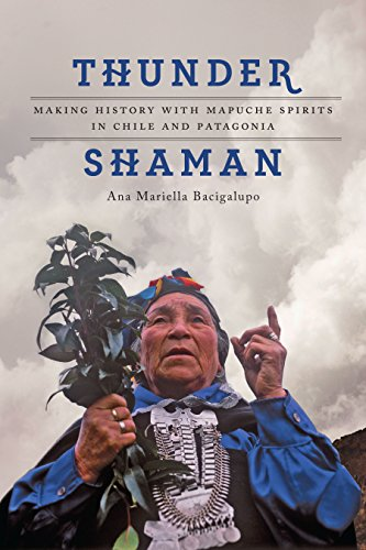 9781477308981: Thunder Shaman: Making History with Mapuche Spirits in Chile and Patagonia
