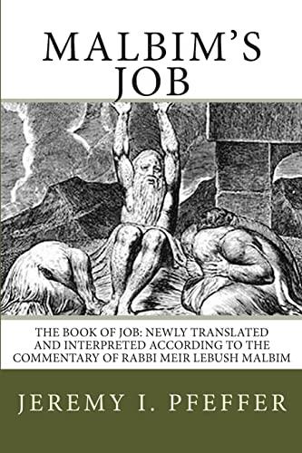 Malbim s Job: The Book of Job: Jeremy I Pfeffer