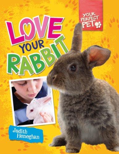 Love Your Rabbit: Judith Heneghan