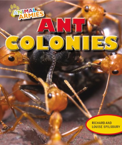 9781477703267: Ant Colonies (Animal Armies)