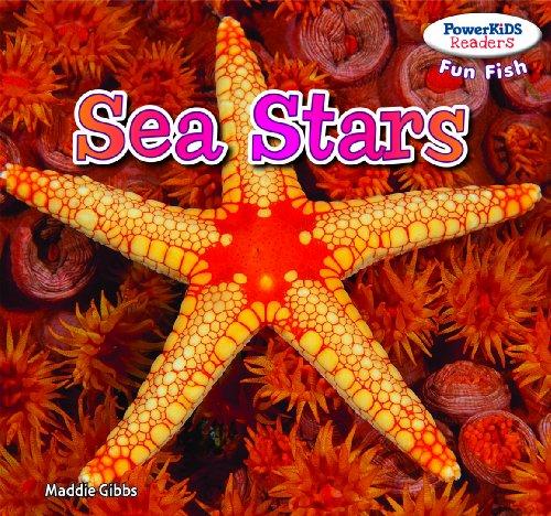 Sea Stars (Library Binding): Maddie Gibbs