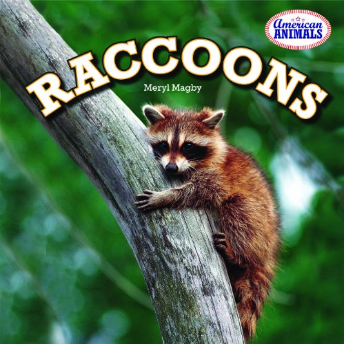 Raccoons (American Animals): Magby, Meryl