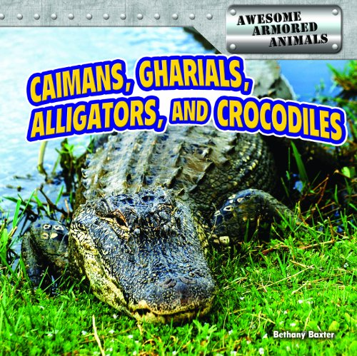 Caimans, Gharials, Alligators, and Crocodiles (Awesome Armored Animals): Bethany Baxter