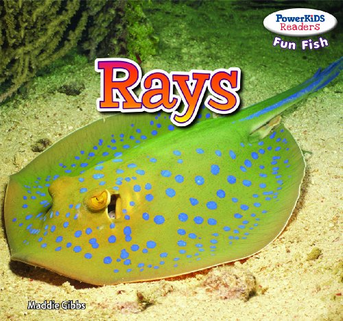 Rays (Powerkids Readers: Fun Fish): Maddie Gibbs