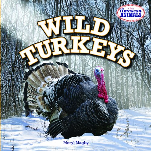 Wild Turkeys (American Animals)