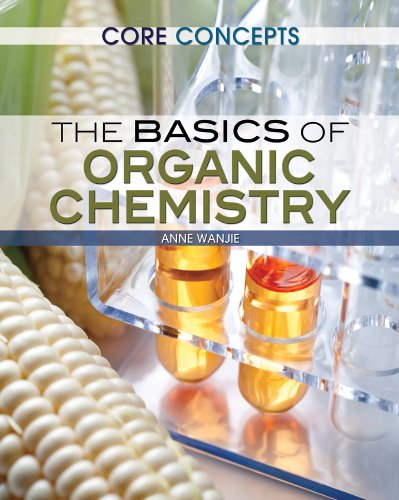 The Basics of Organic Chemistry (Core Concepts): Clowes, Martin