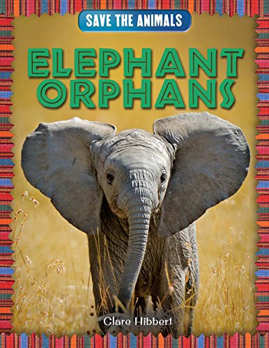 Elephant Orphans (Save the Animals): Clare Hibbert