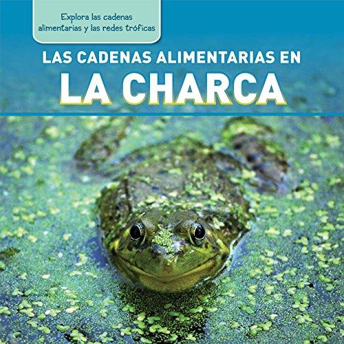 Las Cadenas Alimentarias en la Charca (Pond: Katie Kawa