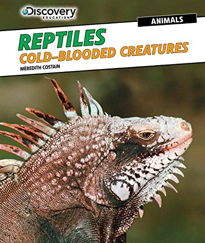 Reptiles: Cold-Blooded Creatures (Discovery Education: Animals): Costain, Meredith