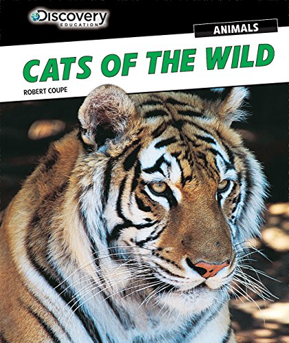 Cats of the Wild (Discovery Education: Animals): Robert Coupe