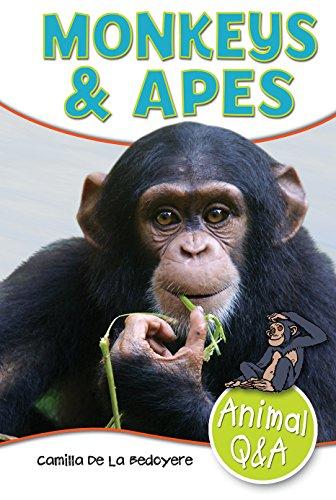 9781477791912: Monkeys & Apes (Animal Q & A)