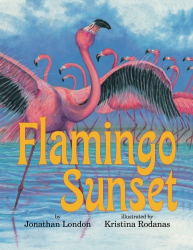 Flamingo Sunset: London, Jonathan