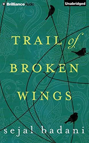 Trail of Broken Wings (Paperback): Sejal Badani