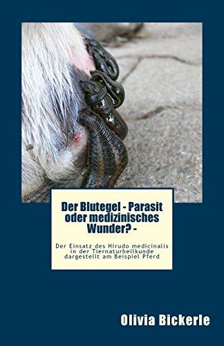 Der Blutegel - Parasit Oder Medizinisches Wunder?: Olivia Bickerle