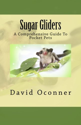 9781478263906: Sugar Gliders: A Comprehensive Guide To Pocket Pets
