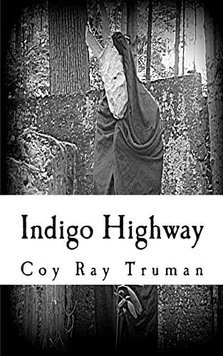 9781478287827: Indigo Highway