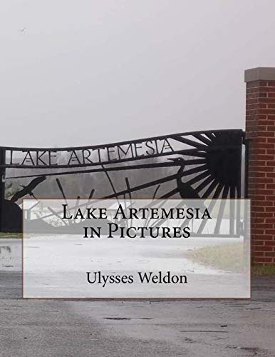 9781478324669: Lake Artemesia in Pictures