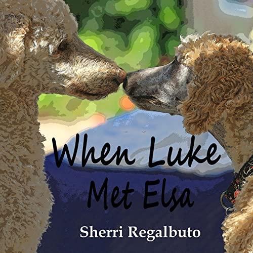 9781478351436: When Luke Met Elsa (Volume 1)