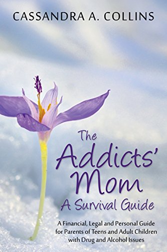 9781478729419: The Addicts' Mom: A Survival Guide: A Financial, Legal and Personal Guide for Parents of Teens and Adult Children with Drug and Alcohol
