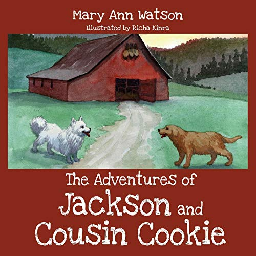 9781478748755: The Adventures of Jackson and Cousin Cookie