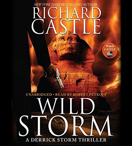 Wild Storm Format: AudioCD: Castle, Richard