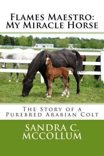9781479168057: Flames Maestro: My Miracle Horse: The Story of a Purebred Arabian Colt
