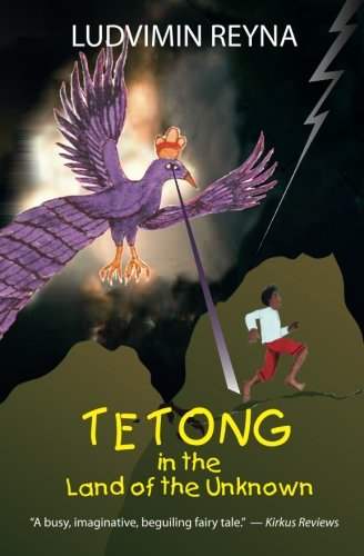 9781479205691: Tetong in the Land of the Unknown (Volume 1)