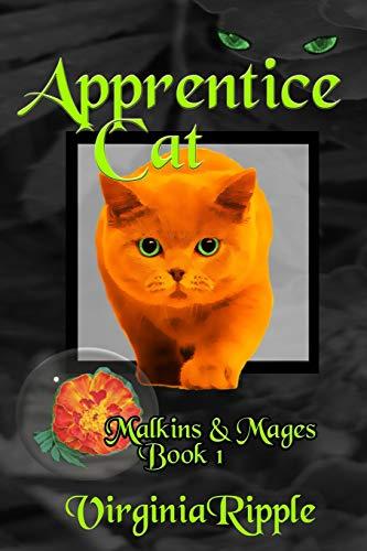 9781479249817: Apprentice Cat