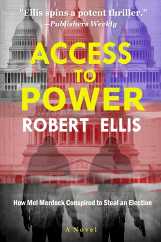 9781479291922: Access to Power